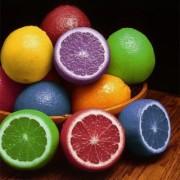 colored_oranges_320_361_c1